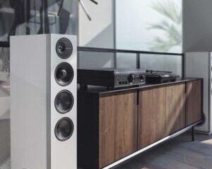 Definitive-Technology-D15-speaker-main pic.